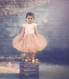 "Champagne glimmer tutu dress - ""April"" - ""Touch of Sparkle"" Collection"