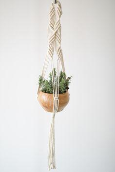 Warrior - macrame plant hanging design idea