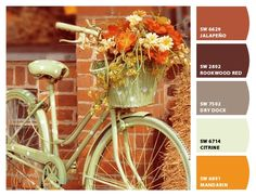 Restoration Hardware to Sherwin Williams paint colors - I want my family room & kitchen painted the fawn color.