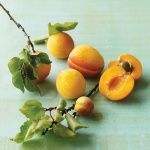 How to pick the best apricots. So helpful!