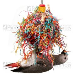 This is a great #Parrot toy with hundreds of strands of colourful crinkle paper and vine balls for your Parrot to preen with.