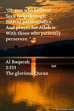 Surah Al Baqarah 2:153. The glorious Quran. Allah is with those who patiently persevere. Muslims / Quran / Allah