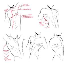 Ideas For Drawing Reference Poses Male Comic Anatomy Sketches, Anatomy Art, Anatomy Drawing, Art Sketches, Art Drawings, Body Drawing, Drawing Base, Figure Drawing, Drawing Reference Poses