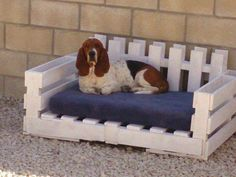 Dog couch made from pallets ~ cute!