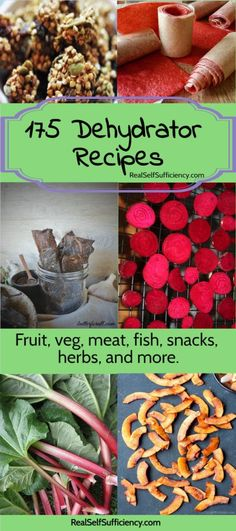175 dehydrator recipes - fruit, veg, meat, fish, snacks, herbs, spices, and more! http://realselfsufficiency.com/dehydrator-recipes/