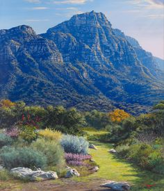 Kirstenbosch Gardens Cape - Feb 2013 by Andrew Cooper Africa Painting, Africa Art, Out Of Africa, Landscape Art, Landscape Paintings, Landscapes, Peaceful Places, Beautiful Places, South African Artists