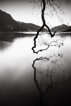 Photograph by Alberto Bresciani (almost looks like a running figure)