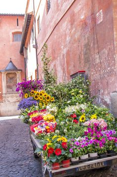 Vacances à Rome #1 | 11 au 18.06.14 | Trastevere Fanny Bnn