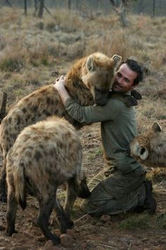 Hyena Hug: The Lion Whisperer, Kevin Richardson, with some of his many hyenas Animals And Pets, Baby Animals, Funny Animals, Cute Animals, Wild Animals, Kevin Richardson, Beautiful Creatures, Animals Beautiful, Wild Dogs