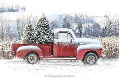 Who can forget Izzy& truck with the missing floor-board? Christmas Red Truck, Christmas Scenes, Christmas Mood, Country Christmas, Christmas Ideas, Holiday Tree, Christmas Stuff, Xmas Tree, Simple Christmas