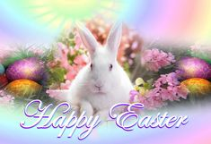 Here you find the most amazing and wonderful images for Easter Crafts. This is the season to make easy Easter treats and decorations.