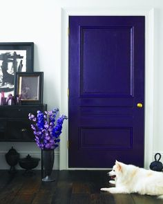 A deep royal purple door paired with sharp black and white.