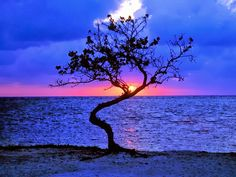 Sunset in Belize, Central America.