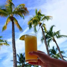 A mango daiquiri palm trees and blue skies are waiting for you at Now Amber Puerto Vallarta, Mango Daiquiri, Mexico Resorts, Time Of Your Life, Pacific Blue, Live In The Now, Palm Trees, Night Life, Glass Of Milk