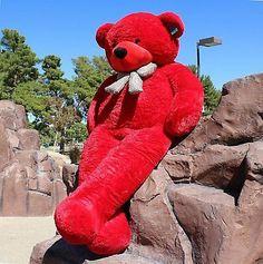 Joyfay Giant Teddy Bear Red Stuffed Plush Toy Valentine Gift for sale online Huge Teddy Bears, Purple Teddy Bear, Giant Teddy Bear, Big Teddy, White Teddy Bear, Teddy Photos, Teddy Bear Images, Bear Photos, Big Stuffed Animal