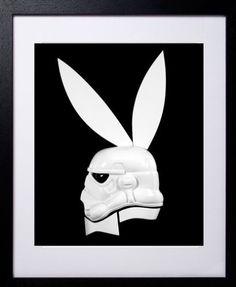Trooper bunny.