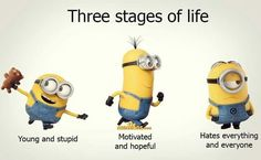 """These Funny and humor Minion are full updated and in new style.Just scroll down and keep reading these """"Top Minions New Quotes"""" for laughing and share with your friends for make him laugh also. Funny Minion Pictures, Funny Minion Memes, Cute Minions, Minions Quotes, Minions Minions, Minion Talk, Minions Fans, Funny Photos, Funny Images"""