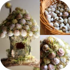 Daily Colours : Fairy Houses - Snail Shell Fairy House Tutorial
