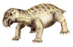 Lystrosaurus | File:Lystrosaurus.jpg