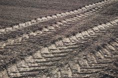 Tractor tyre tracks, newly ploughed field by hayley green, via Geograph