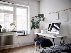 Bedroom, living room and work space in one in Office Space