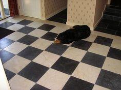 Afbeeldingsresultaat voor zwart wit vloeren natuursteen