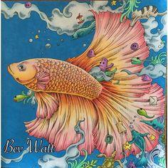 #animorphia #doodlemorphia #kerbyrosanes #prismacolor #coloring #colouring #colouringin #adultcolouring #fish