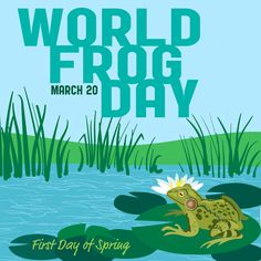 World Frog Day is March 20.