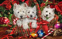 "New for 2013! West Highland White Terrier Christmas Holiday Cards are 8 1/2"" x 5 1/2"" and come in packages of 12 cards. One design per package. All designs include envelopes, your personal message, and choice of greeting. Select the inside greeting of your choice from the menu below.Add your custom personal message to the Comments box during checkout."