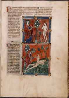 Two miniatures: God and Adam in the Garden; God creating Eve from Adams rib. With text, initials, linefiller, placema... (ca. 1390)