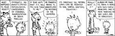 Calvin and Hobbes - Unraveling the mysteries of the universe