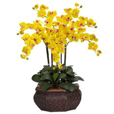 """Large Phalaenopsis Silk Flower Arrangement - There is no escaping the distinctive presence of this Phalaenopsis Arrangement when walking into a room! Standing at an impressive 32"""" tall in its beautiful planter, these cheerful blooms, with their even brighter centers, can't help but put a smile on even the most serious of faces. A wonderful gift to share, or to keep one for yourself, this is one plant that will be a can't-miss! Number of Trunks: NA Number of Flowers: NA Number of Leaves: NA…"""