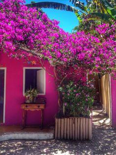 Formosa Casa: Trancoso, Vida Calma E Tranquila!