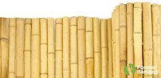 Cheap bamboo fences environmentally friendly and durable Günstige Bambuszäune sind umweltfreundlich Fence Design, Garden Design, Bamboo Building, Types Of Fences, Bamboo Fence, Fence Panels, Tropical Houses, Outdoor Gardens, Modern Design