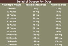 This Benadryl for dogs dosage chart will show you how much Benadryl is safe for your dog. This dog benadryl dosage chart shows doses for all size dogs. Yorkies, Chihuahuas, Pug Dogs, Yorkie Dogs, Corgi Puppies, Terrier Puppies, Maltipoo, Pomeranians, Pekingese