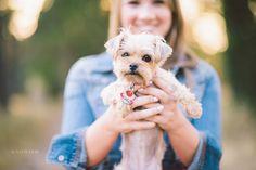 senior portraits, senior pictures, dogs, puppies