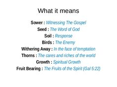 Parable of the sower (Part of the Synoptic Gospel Study)