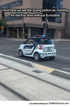 Young Police Car Spotted