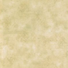 Brewster Beige Vine Wall Wallpaper | Overstock.com Shopping - Top Rated Brewster Wallpaper