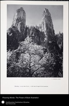 Cathedral Spires - Yosemite, Ansel Adams photographer, American, 1959