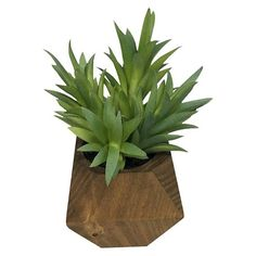 """• Plastic and wood<br>• Stands 6"""" high<br><br>No need to worry about who's going to water your plant on vacation with the Artificial Layered Leaf Plant in Wood Pot Small from Threshold. This succulent looks lovely on a windowsill or paired with other plants."""
