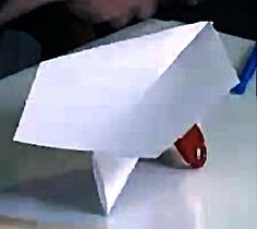 World Record 2012 Paper Airplane