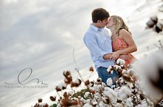 love the cotton field and the angle
