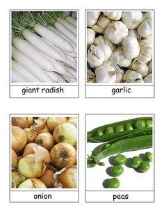 Montessori Veggie cards...free printable