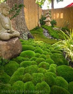 If you're interested in how to make a Japanese garden, it can readily be completed in your backyard. A Japanese garden isn't an exercise in producing the most important and the ideal. D… #GardeningIdeas