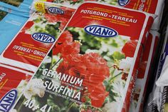 Viano potgrond speciaal voor geraniums en surfinias