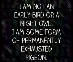 I am not an early bird or a night owl, I am more like an exhausted pigeon.