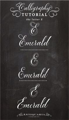 Calligraphy Tutorial • Letter E