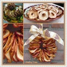 dried apple crafts   ... from dried apples. Nice for the birds in ...   Arts & Crafts, an