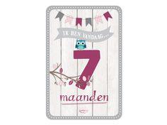 My Happy Moment: Ik ben vandaag 7 maanden! Verkrijgbaar als 18-delige set voor € 9,95 http://www.myhappymoments.nl/home/